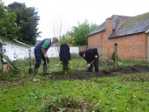 Jubilee Hedge Nov 2012 _007